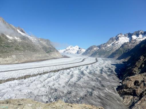 Semi-Marathon du glacier d'Aletch